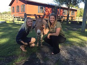 Quantum Leap Farm As part of the Leadership Tampa Bay program, Stacey Owen visited the Quantum Leap Farm! They are equine assisted therapy program that helps disabled children and Veterans.