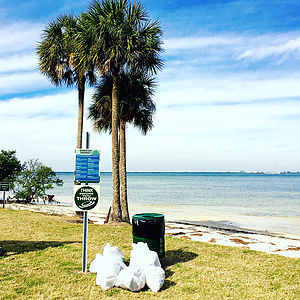 Keep Tampa Bay Beautiful Andrew Aubery and his networking group, BOMA Tampa Bay participated in Keep Tampa Bay Beautiful at Picnic Island.
